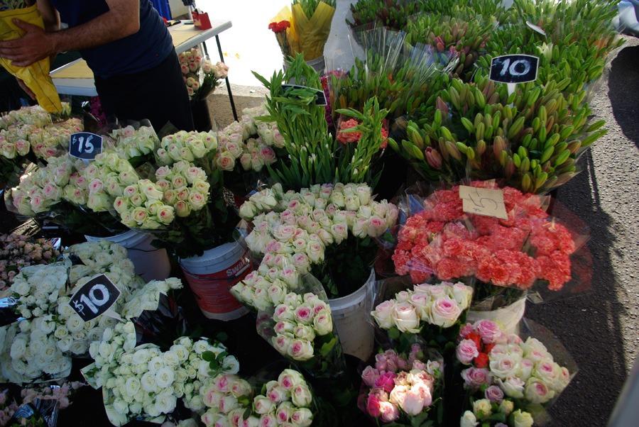 $10-roses