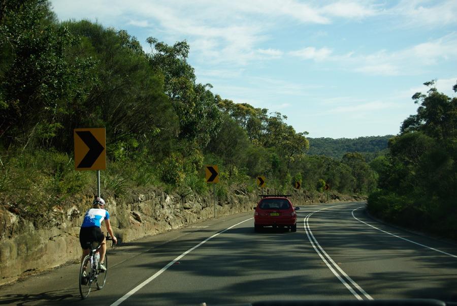sydney-bushland-highway