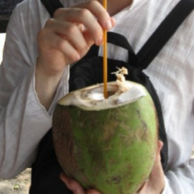 drinking-a-fresh-coconut-in-india
